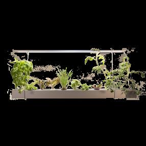 스마트 수경재배기 식물재배기 이지그로우 행잉형[구매자조립상품]