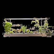 스마트 수경재배기 식물재배기 이지그로우 행잉형[조립비포함상품]